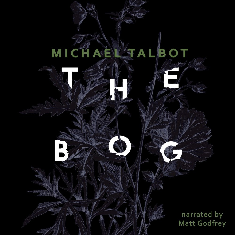 The-Bog_Michael Talbot_Matt Godfrey.jpg