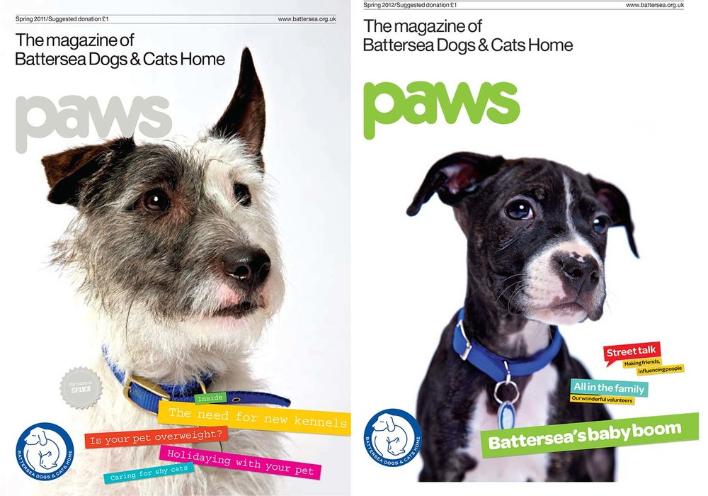 Paws_battersea_dog_cat.jpg