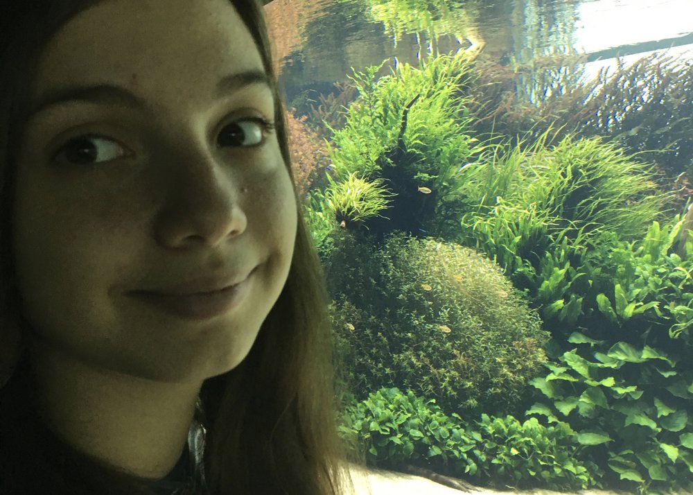 Inês at the  Takashi Amano Underwater Forest exhibition .