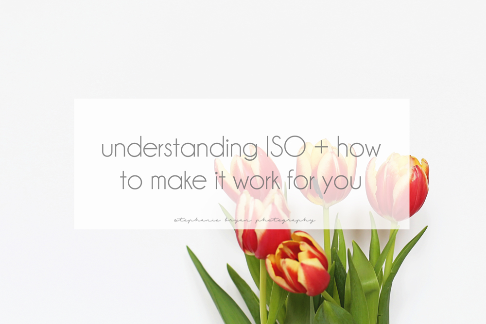 Stephanie Bryan Photography - Understanding ISO + how to make it work for you
