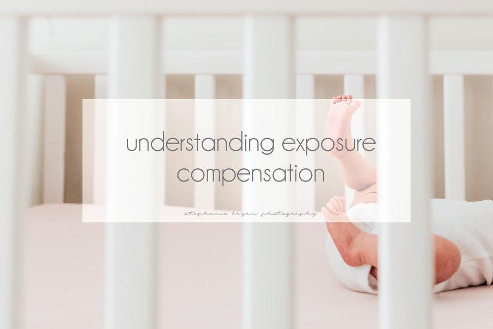 stephaniebryanphotography_understanding_exposure_compensation.jpg