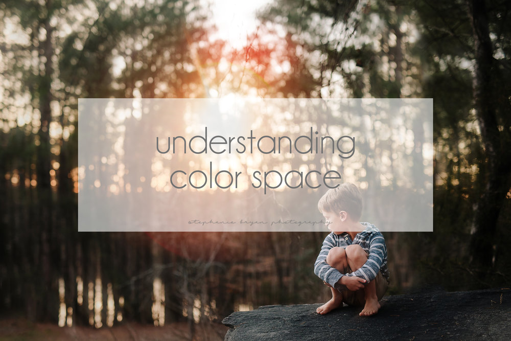 stephaniebryanphotography_understandingcolorspace.jpg