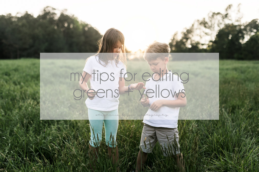 Stephanie Bryan Photography - My tips for editing greens + yellows