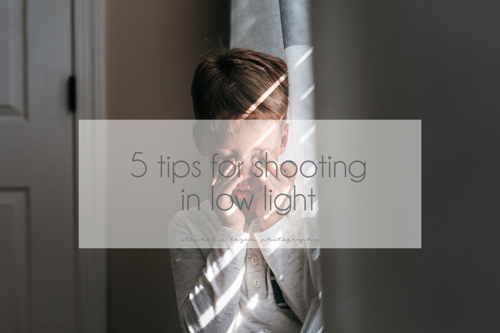 Stephanie Bryan Photography - 5 tips for shooting in low light