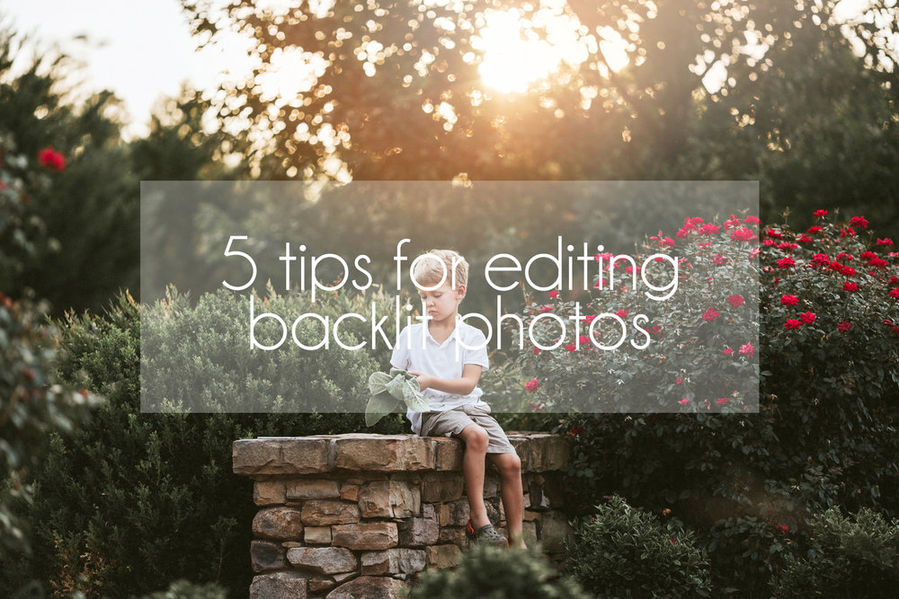 Stephanie Bryan Photography - 5 tips for editing backlit photos