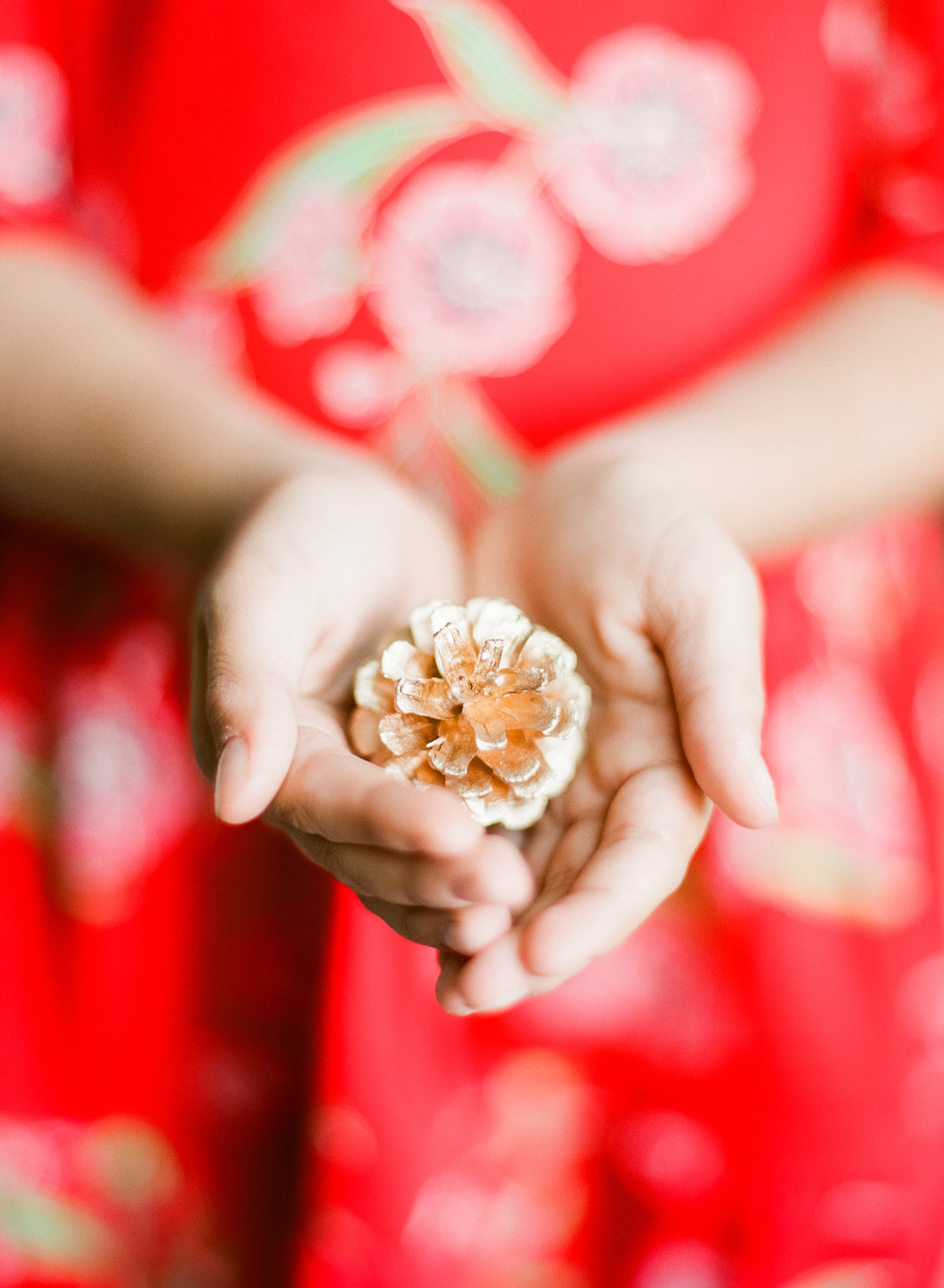 Stephanie Bryan Photography - Tea Collection Holiday Promotion | Raleigh Photographer