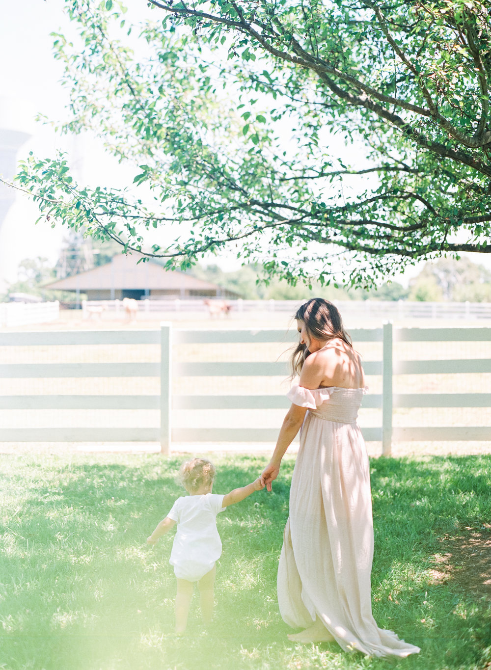 wake-forest-family-maternity-film-photographer