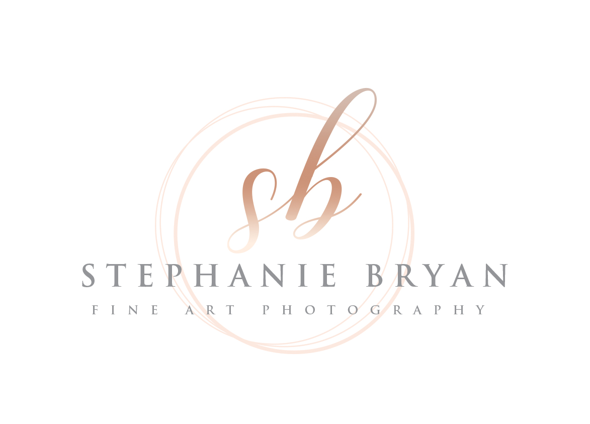 Stephanie Bryan Photography - Raleigh Newborn and Family Photographer
