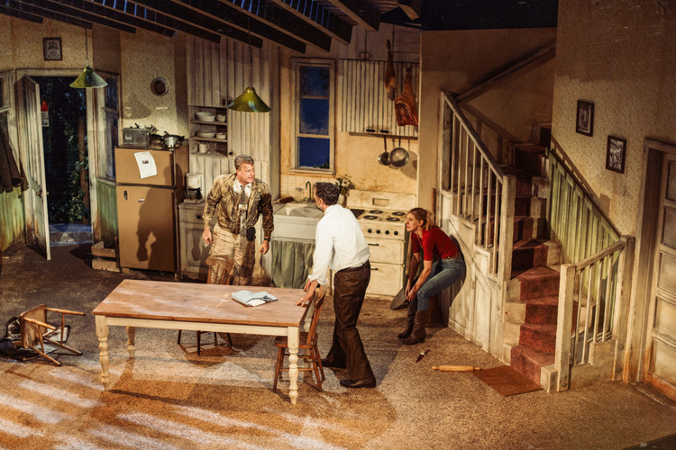 Pig Farm by Greg Kotis | St. James Theatre | Directed by Katharine Farmer | Set & Costumes by Carla Goodman | Lighting by Jason Taylor (Photograph by Chris Davis @ Specular)