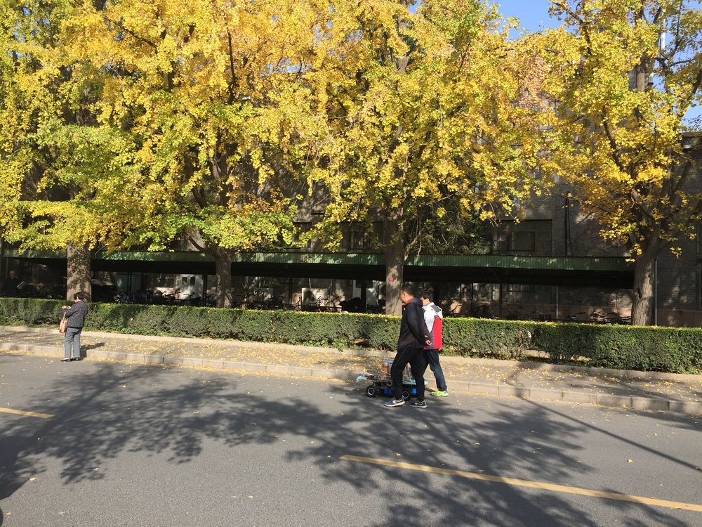 On the campus of Tsinghua University