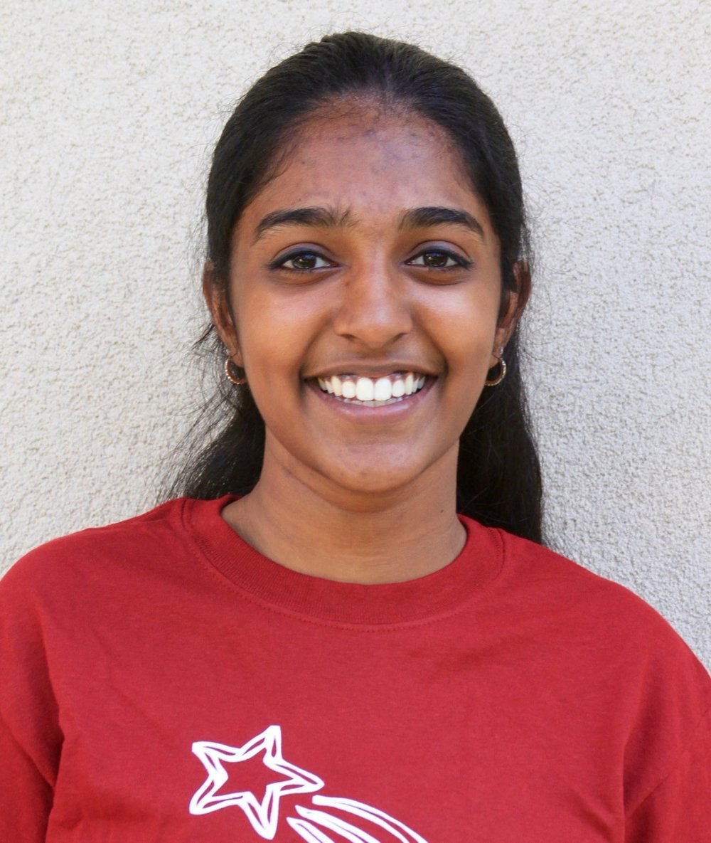 PUBLIC SPEAKING  Neha Annamalai