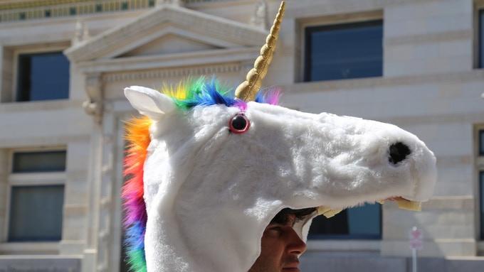 The Unicorn Coat