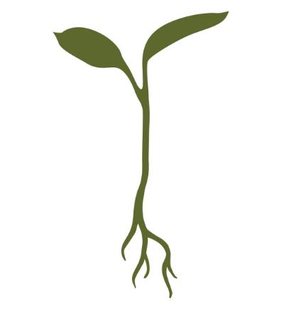 RG-Sprout-Logo.jpg