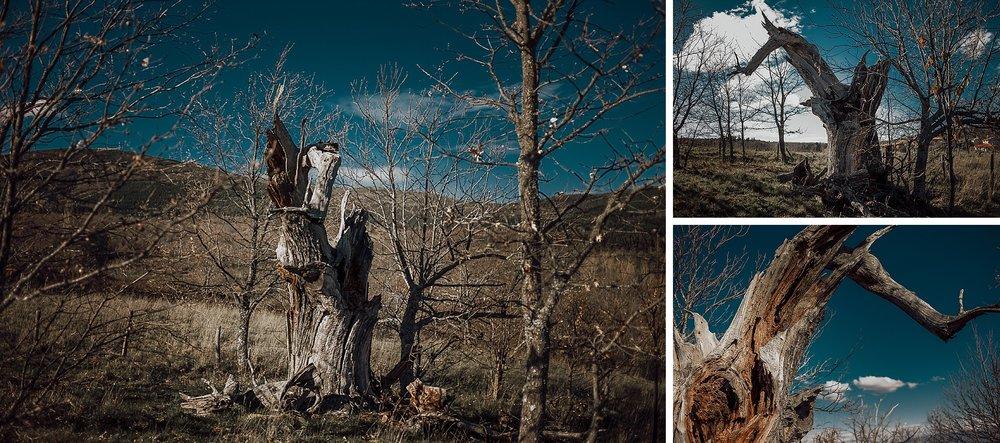 Fotografo-Salamanca-FedeGrau-33-.jpg