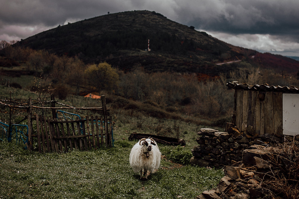 Fotografo-Salamanca-FedeGrau-49-.jpg