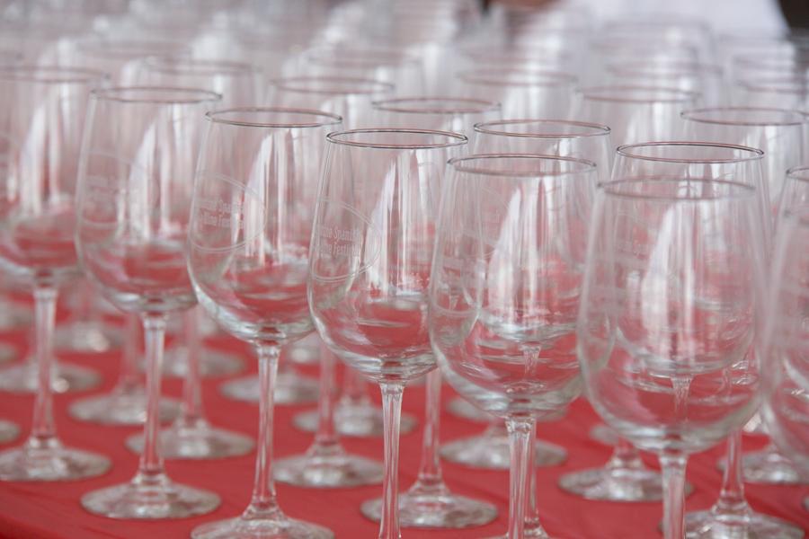 2334 Spanish Wine Festival 2017-Hird,J.jpg