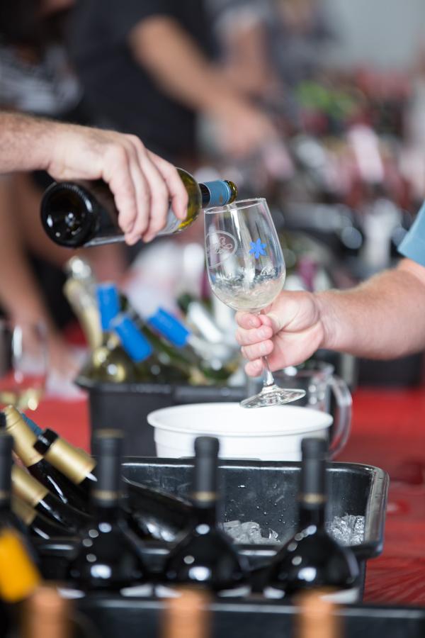 2393 Spanish Wine Festival 2017-Hird,J.jpg