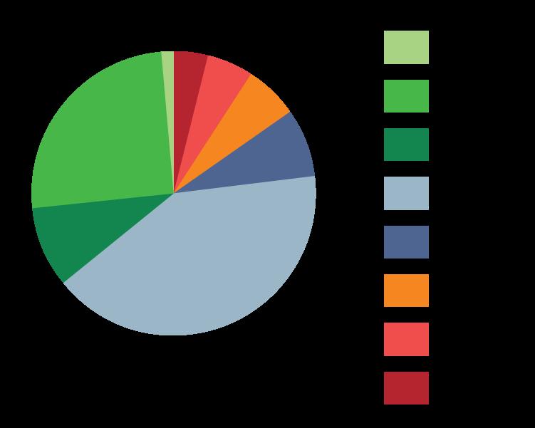 Website Pie Graphs-01.png
