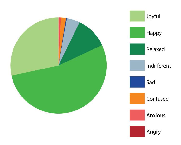 Website Pie Graphs-02.png