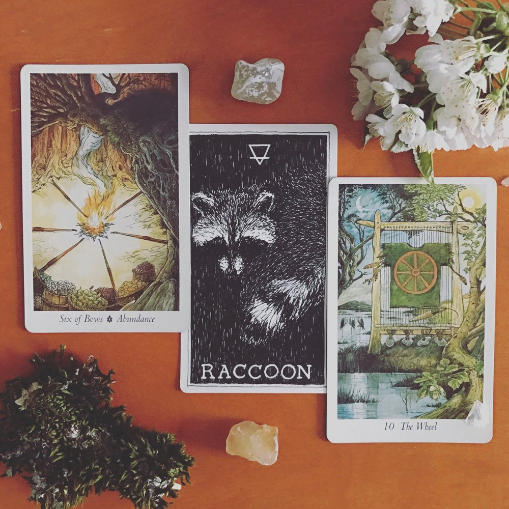 Full Moon morning blessings to you all. Are you ready for tonight's full moon? She's a powerful one and in my moon sign, so I'm sure I'll be feeling it something fierce. If you are wanting extra lunar guidance and are a card slingin' radical, check out my astrological interpretation and full moon spread I made for the specific aspects and alignments happening tonight/tomorrow!  Today's draw is a beautiful reminder and has me inspired to spend this full moon contemplating and reaching for the rewards that come with connecting to your creative soul and sharing your art with the world. We are being asked to take our art seriously, to give it our time and effort, to stand by it proudly, and work toward the rewards of abundance that come after doing the hard work.   And the Wheel is here to remind us that though there are a plethora of excuses for not getting down with our creativity, the fact remains that we mold our life through every decision we make about how we spend our time. There is a lot that could be standing in your way: whether it is simply the pressure of days, your insecurities, your obligations, your energy levels, your mental health, your busy schedule… And then there's everything that happens outside of ourselves that we have no control over. Yet, if we don't make our creative expressions a priority and make time for them, then our art won't manifest.  And how heartbreaking that is for you and for the world. Do us all a favor and do some reorganizing or disciplining or whatever it is you need to do to take your creative soul seriously. Whatever else is this life for, really? Love and art is all.  Blessed be.