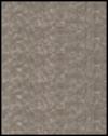 Metallic Gray
