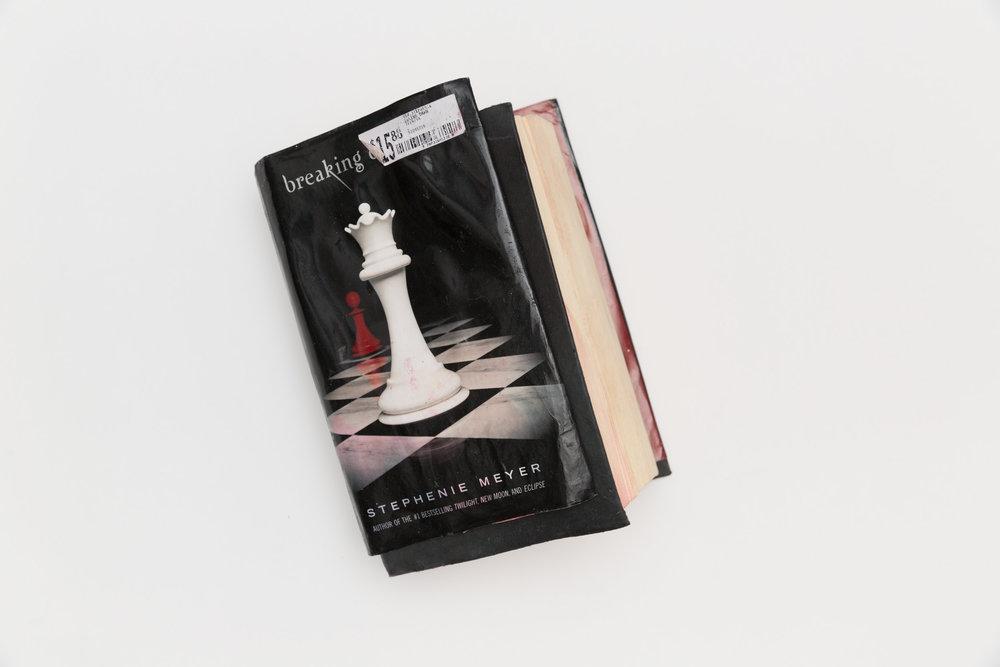 ThePerils_TwilightBook.jpg