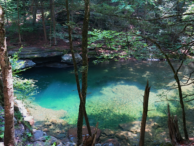 Six Great Swimming Holes in the Hudson Valley /  Blog Post