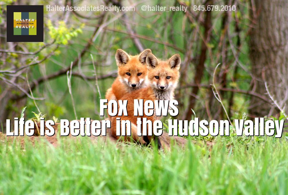 foxeslogo copy.jpg