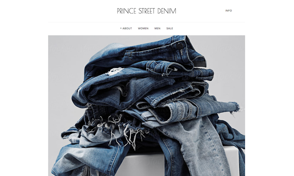 Prince Street Denim - Sample of the PREMIUM Website Offer