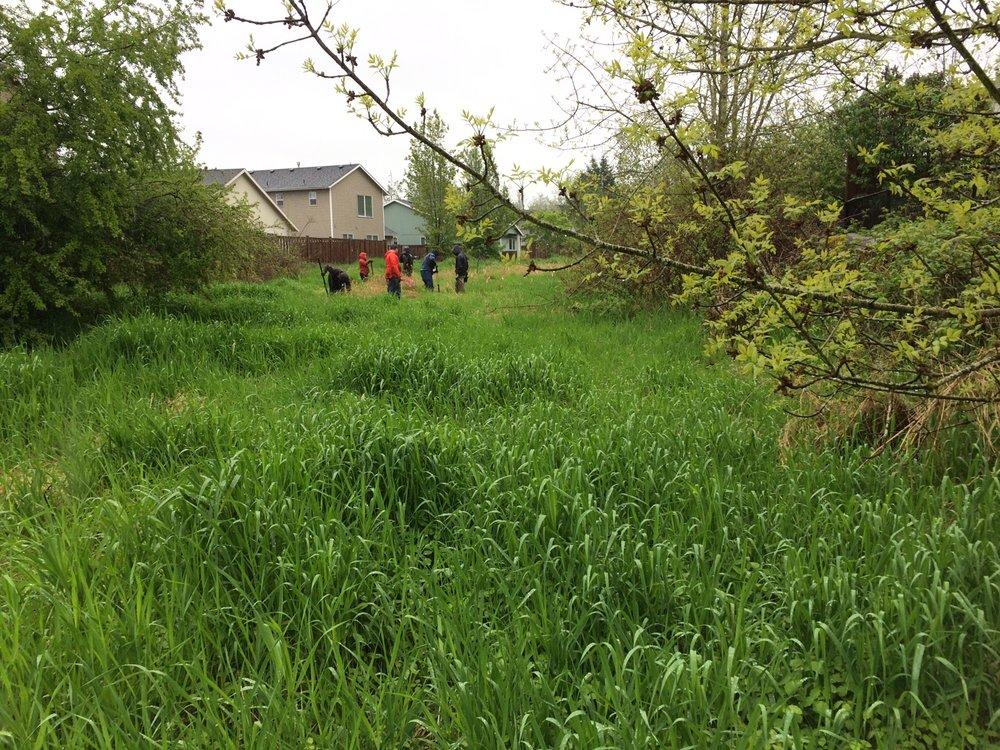 Green Mountain Energy volunteers, helping out.JPG