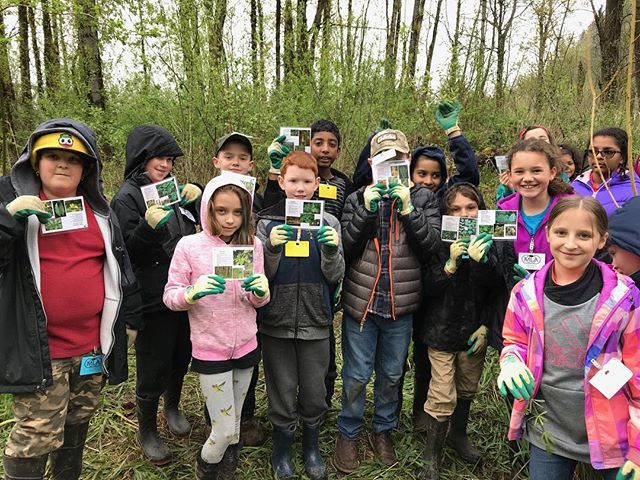 We found them all! Native plant identification with MLA #nativeplants #school #plantingtreesgrowingleaders #beavercreek #oregon #troutdale #pnw