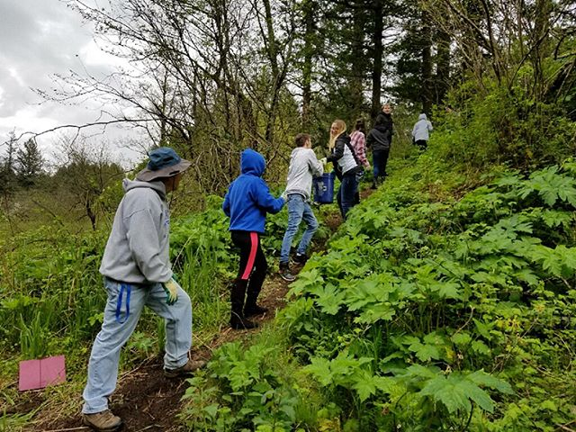Thanks to Springwater High School for joining us for Community Cares Day!  #beavercreek #troutdale #oregon #invasivespeciesremoval #mulch #nativeplants