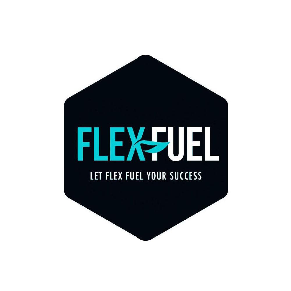 flexfuel-01.jpg