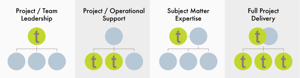 Service Delivery Model @2x.png