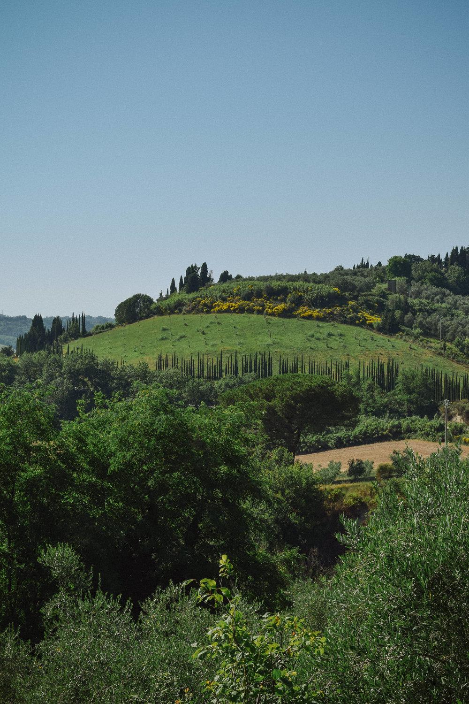 Italy_2016-319 copy.jpg