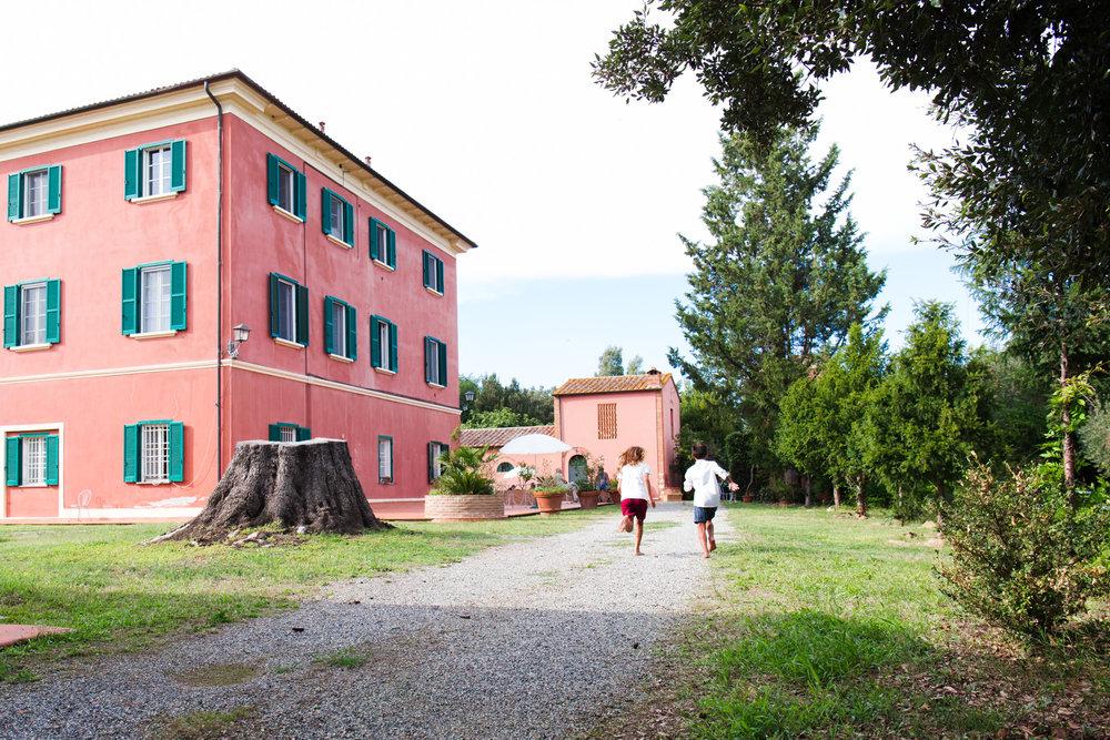fattoria-di-collemezzano-home_web-1.jpg