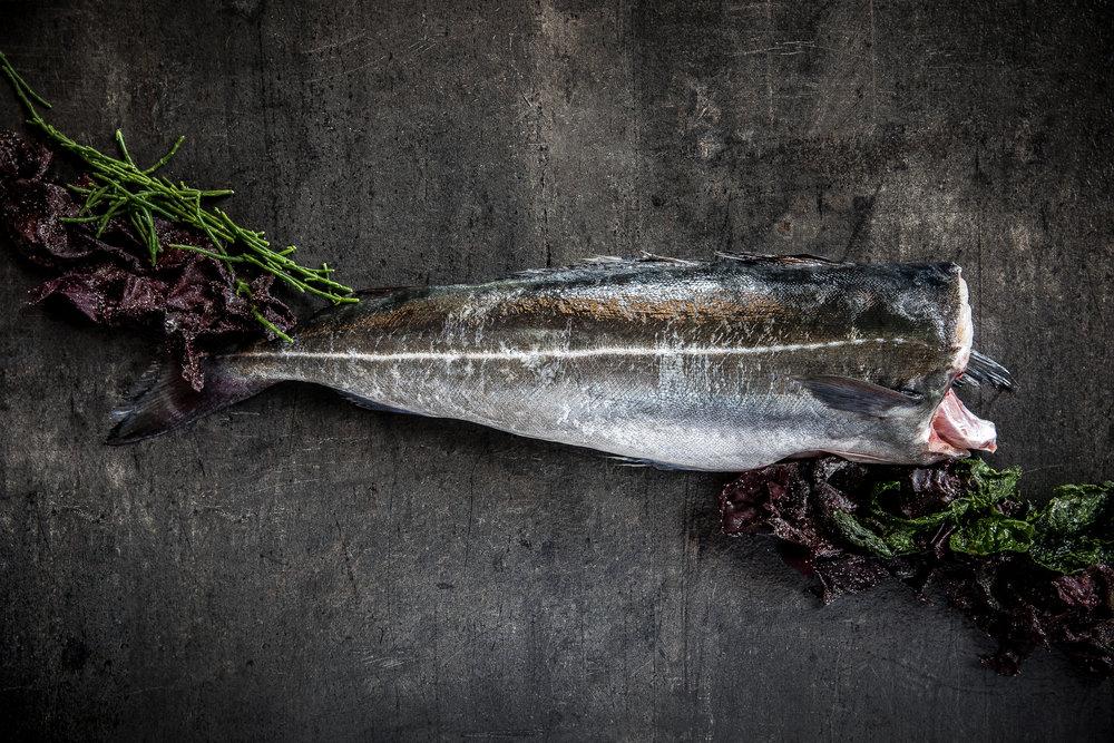 fiskeriet_080318_0033.jpg