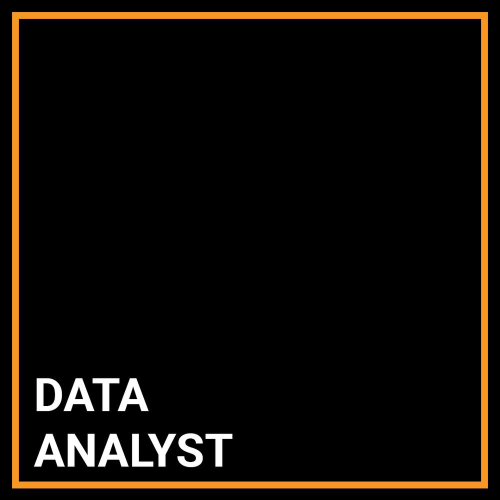 Financial Crimes Data Analyst - New York, New York