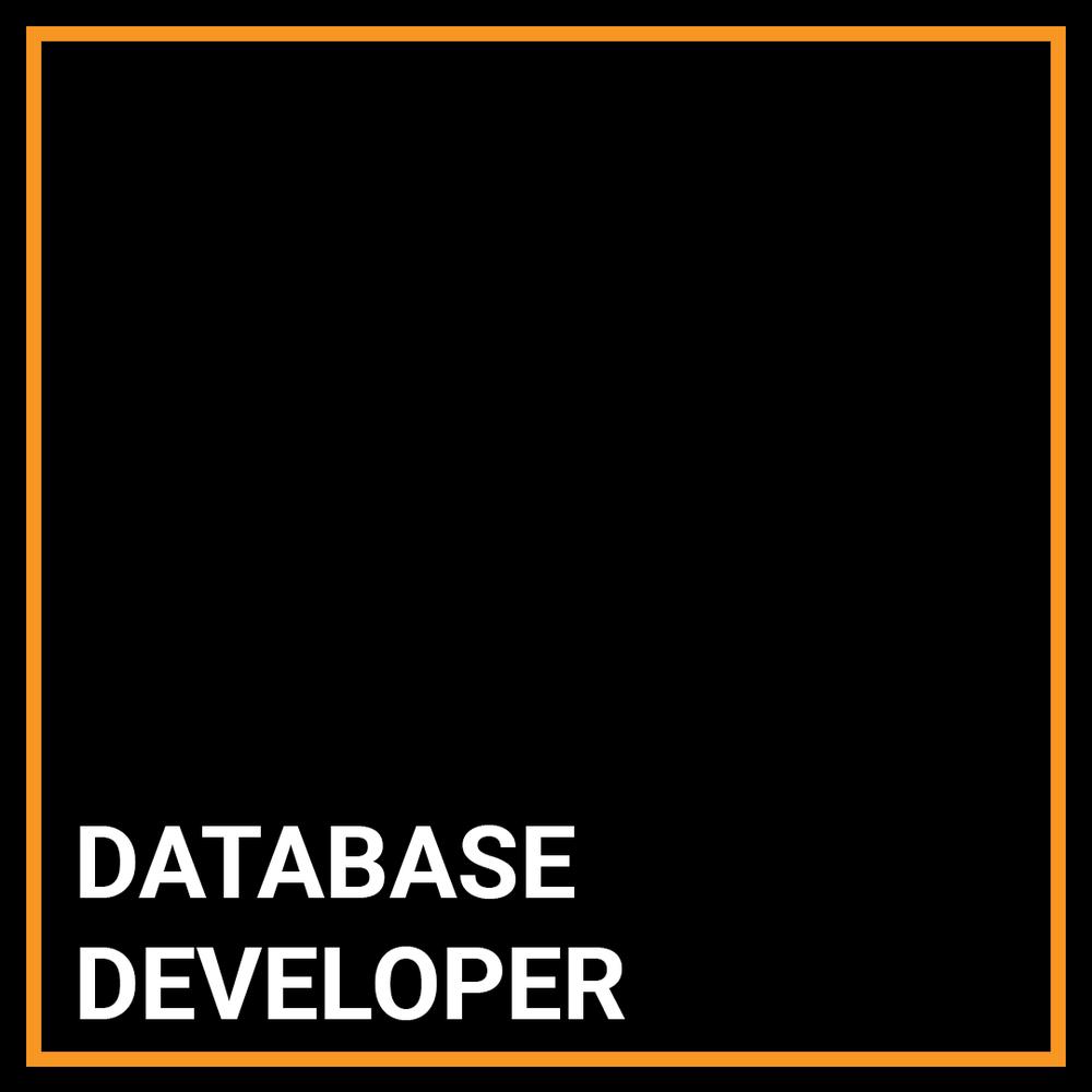 Sybase Database Developer - Chicago, Illinois