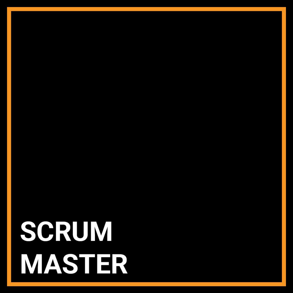 Agile Coach / Scrum Master - PM / BA - New York, New York