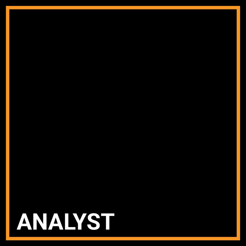 AML Transaction Monitoring Investigations Analyst - Jacksonville, Florida