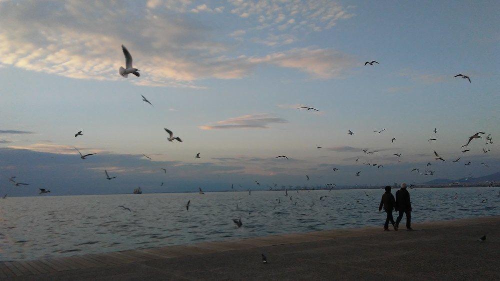 Thessaloniki, 2017, Demi Frangos