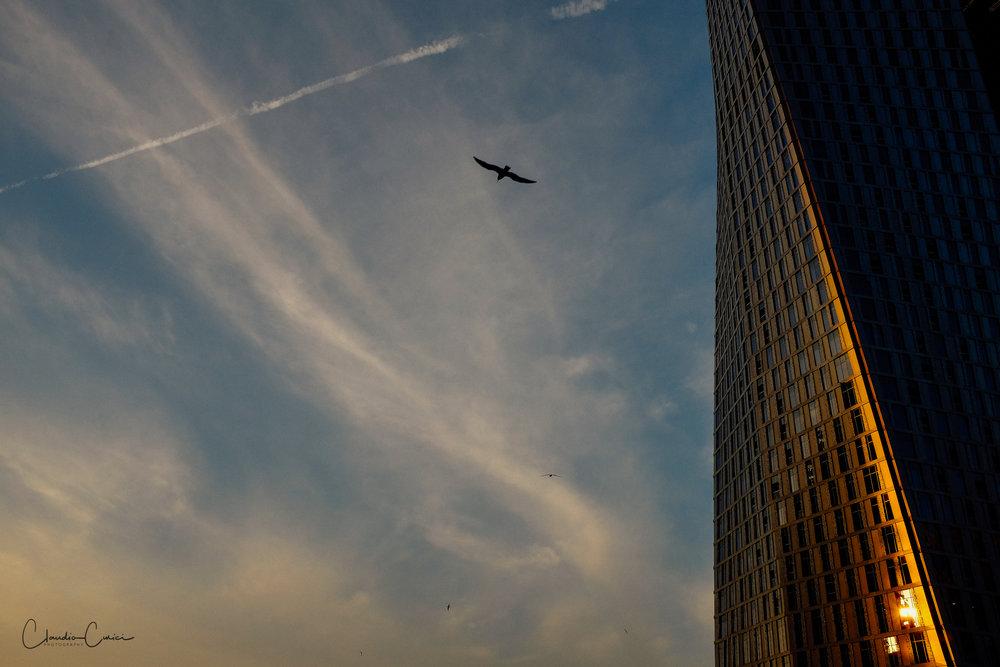 Gratitude. November 29, 2014, Dubai. Fujifilm x100S 23mm @ ISO 400, f 11, 1/250