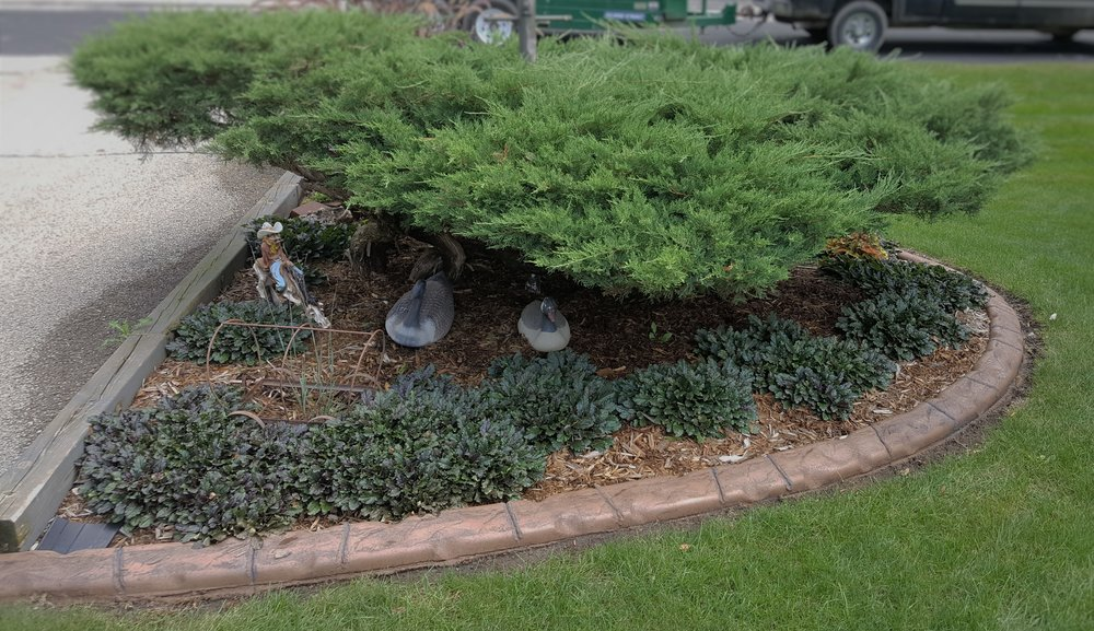 Get a Free Estimate for Curbing or a Landscape Freshen Up