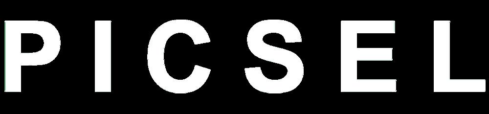 PICSEL_logo_white.jpg