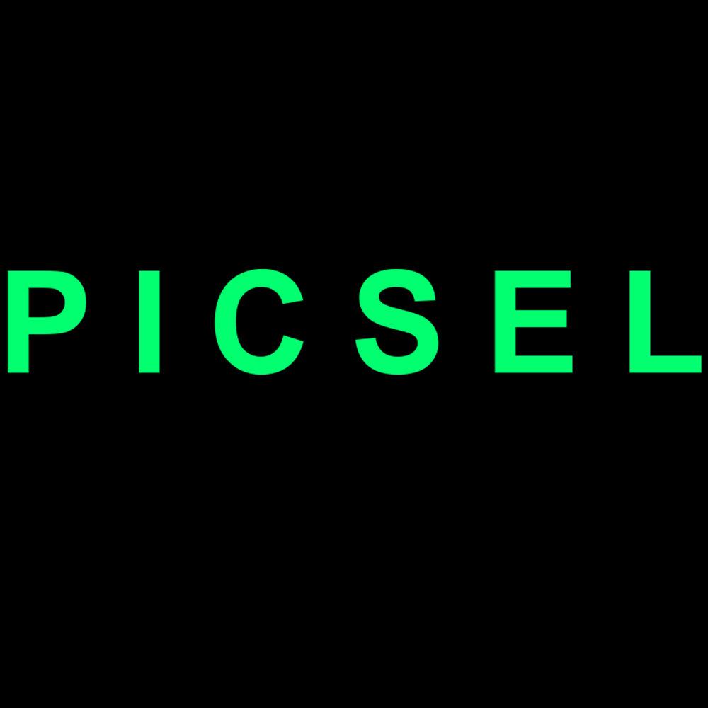 PICSEL_logo_3k.jpg