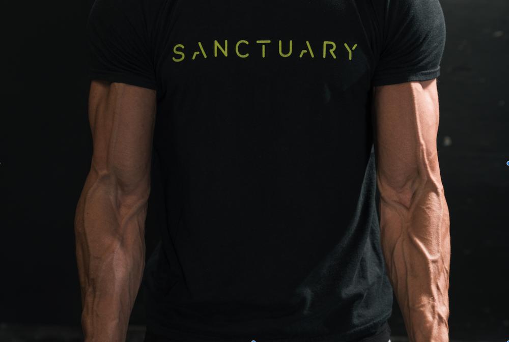 Sanctuary Hybrid Image