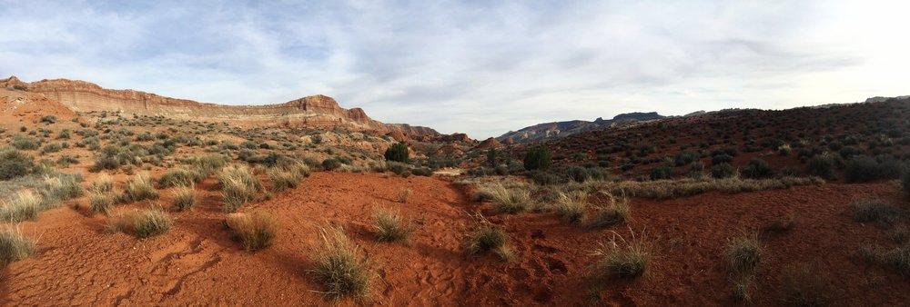 A late afternoon trek down Halls Creek
