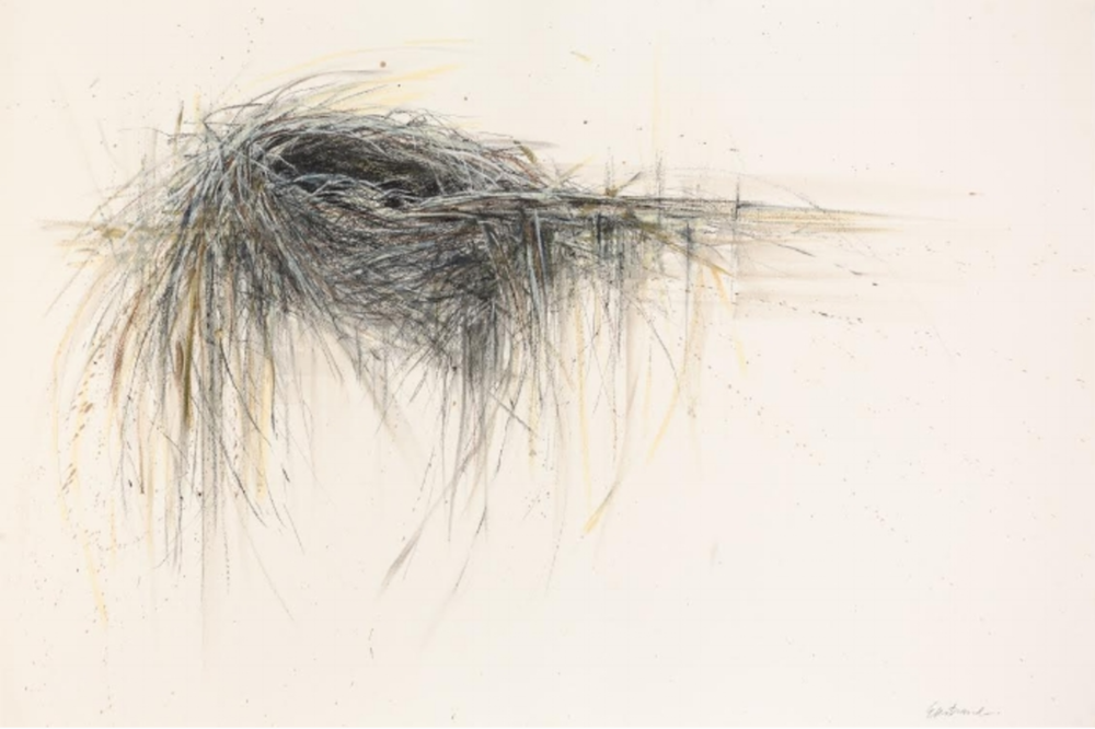 Nest on Barn Wall, Kris Ekstrand Molesworth