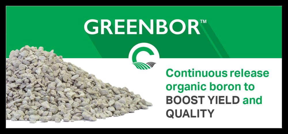 GreenBorAd_v3.png